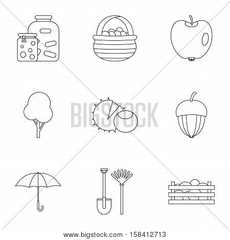 Autumn coming icons set. Outline illustration of 9 autumn coming vector icons for web