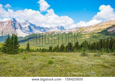 Scenic Summer In The  Mountains