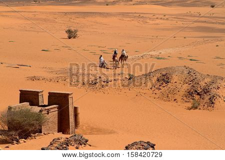 Caravan in the Sahara from Sudan near Meroe poster
