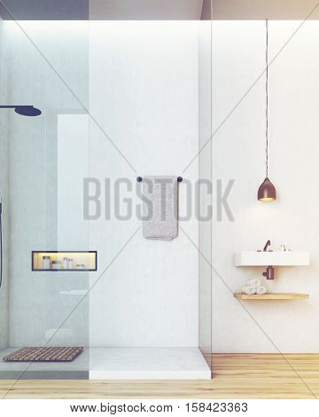 Bathroom And Toilet Interior With White Walls, Toned