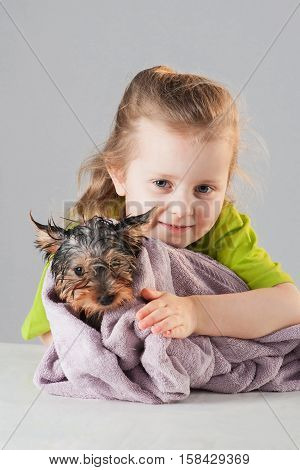Little girl with puppy getting dry after his bath