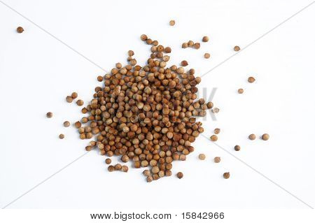 bunch of dried coriander fruit