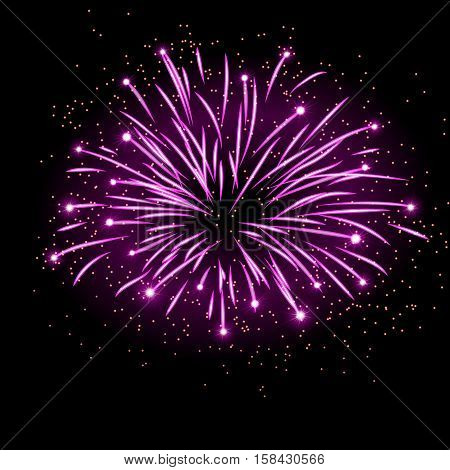 Firework bursting sparkle background. Isolated pink colorful night fire beautiful explosion for celebration holiday Christmas New Year birthday. Symbol festive anniversary Vector illustration