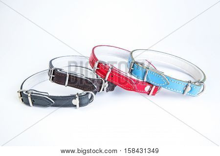 Leather black red blue brown dog collars on a white background