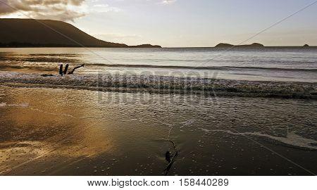 Golden hour on the beach in Cairns Australia