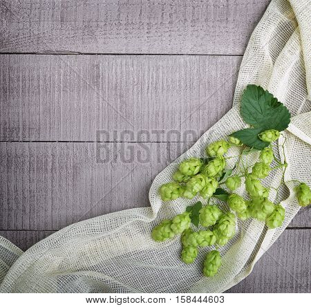 Fresh green hop cones with leaves on a rough cloth. Medicinal herbs. Brewing Spices. Old boards and hop cones. Top view.