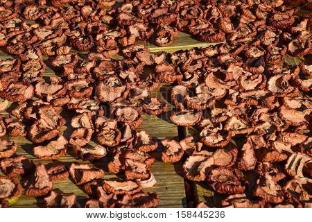 Dried Fruits Are Dried On A Wooden Board. Dried Apples, Cut Into Slices