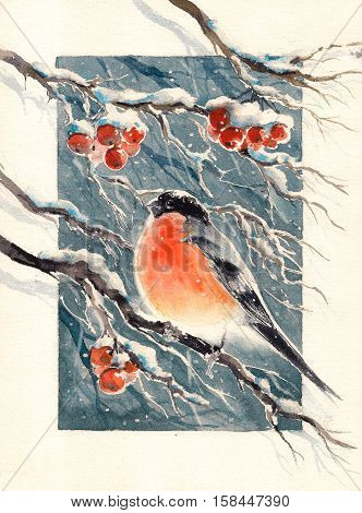 Cristmas bullfinch illustration, postcard-red bird on a sprig .Picture created with watercolors.
