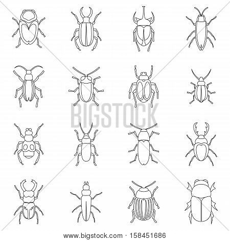 Bugs icons set. Outline illustration of 16 bugs vector icons for web
