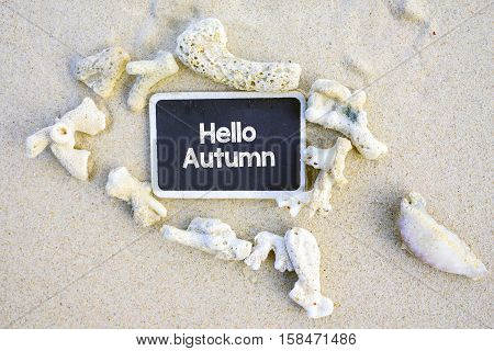 Hello Autumn text written on chalkboard on beach