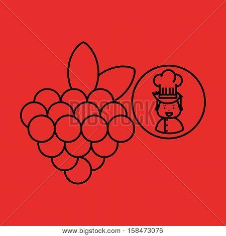 cartoon chef gourmet grape vector illustration eps 10