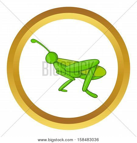 Grasshopper vector icon in golden circle, cartoon style isolated on white background