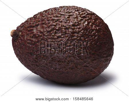 Avocado Hass Bilse, Brown (persea Americana), Paths