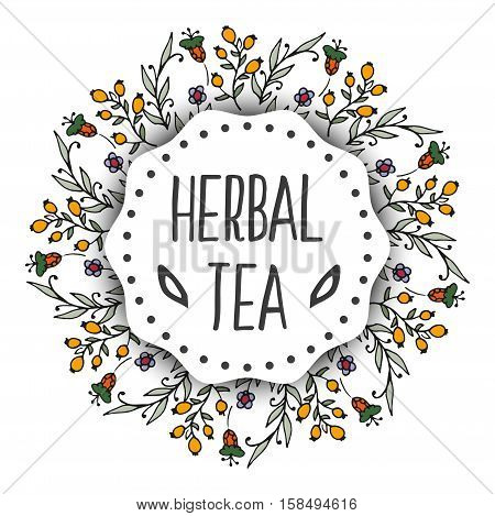 Herbal tea background. Round frame organic herbs and wild flowers. Hand sketched briar illustration. Flower and leaves branches. Floral vector design.