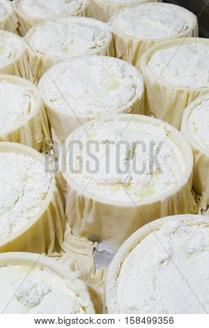 Pieces Of Fresh Cheese Wrapped In Cloth Canvas