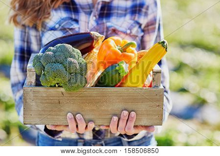 Young Woman Holding Wooden Crate With Vegetables