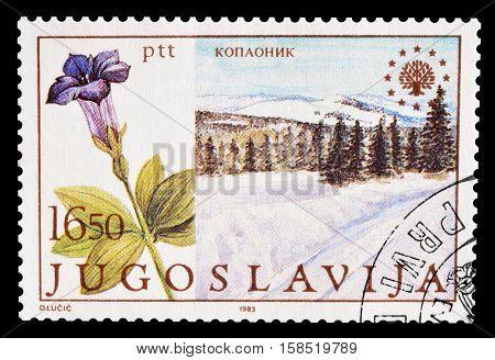 YUGOSLAVIA - CIRCA 1983 : Cancelled postage stamp printed by Yugoslavia, that shows National park Kopaonik.