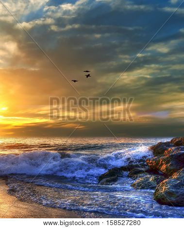 Magical Sunset beach with birds in flight , Perth  WA