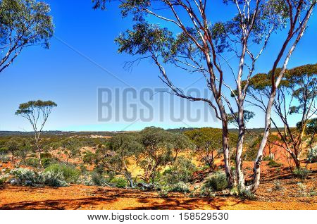 Red colored earth of inland Western Australia