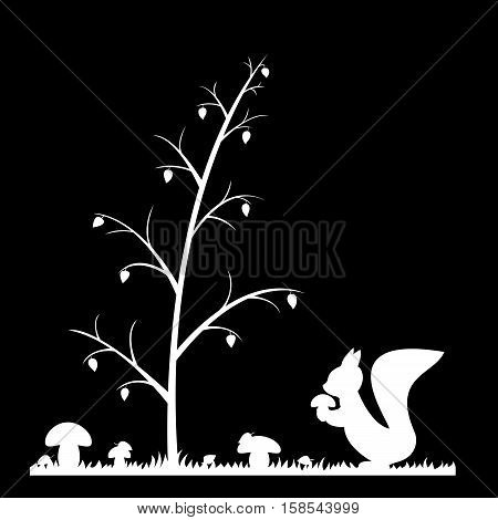 Silhouette of the squirrel in the autumn forest.