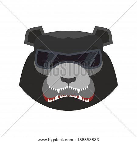 Angry Bear In Green Beret. Evil Baribal. Aggressive Grizzly Head. Wild Animal Muzzle Isolated. Fores