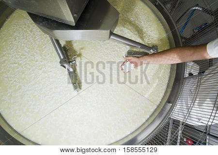 Cheesemaker Controls The Milk Curd