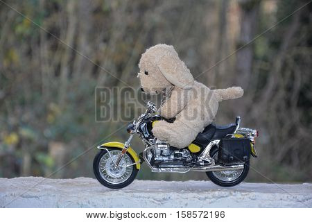 Dog soft toy sits on motorcycle outside