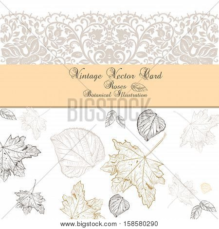 Vintage Autumn lace card. Vector hand drawn autumn tree leaves pattern. Retro engraved technique