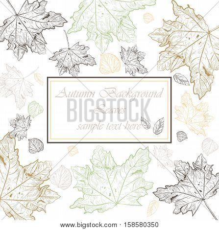 Autumn Vintage card background. Vector hand drawn autumn tree leaves pattern. Retro engraved technique