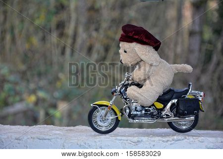 Dog soft toy with cap  sits on motorcycle outside