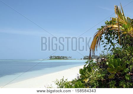 Tropical Beach with White Sand Turqoise Water and Tropical Vegetation. Bodufinolhu aka Fun Island South Male Atoll Maldives