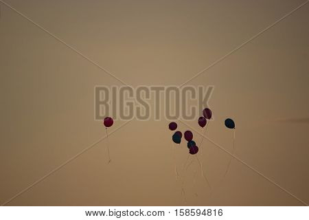 colorful ballons fly high in the sky