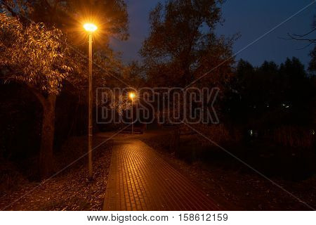 Twilight in the park and street lights with star filter effect. Park near Yauza river in Babushkinskiy district Moscow. The weather is quite rainy here.