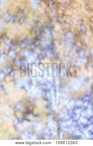 abstract background background, light, bokeh, color, event, stars, blue, black