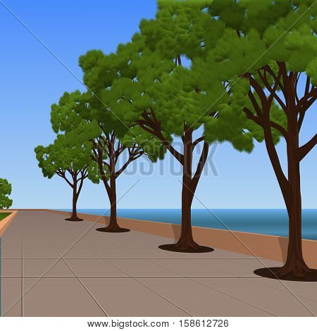 alley on the sea promenade with pines