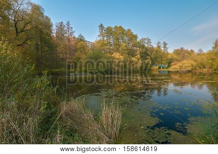 Pond in the country side in fall Vorobyovo Kaluga region Russia