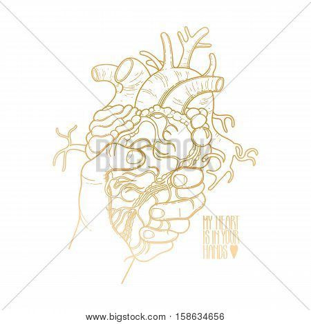 Graphic hand grasping human heart. Vector card isolated on white background in golden color