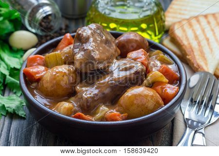 Hearty beef stew with carrot celery shallot and potato horizontal