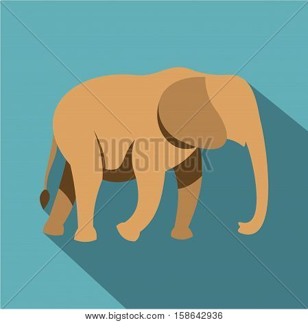 Elephant icon. Flat illustration of elephant vector icon for web isolated on baby blue background