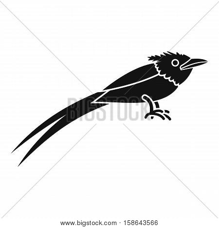 Asian paradise flycatcher icon. Simple illustration of asian paradise flycatcher vector icon for web