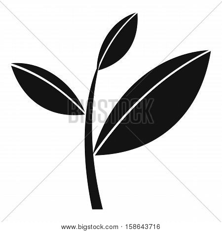 Tea leaf sprout icon. Simple illustration of tea leaf sprout vector icon for web