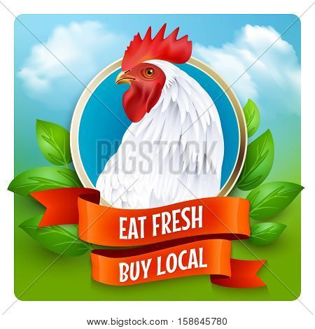 Local organic poultry farm advertisement poster with white country style rooster head and green farmland background vector illustration