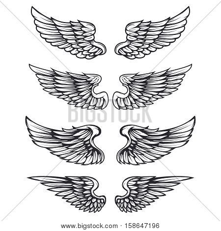 Set of vintage vector wings isolated on white background. Design elements for logo, label, emblem, sign, brand mark. Vector illustration.