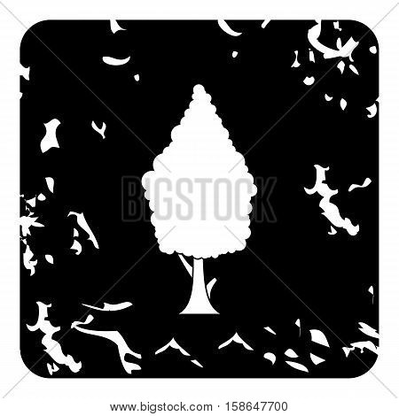 Cypress tree icon. Grunge illustration of cypress tree vector icon for web design
