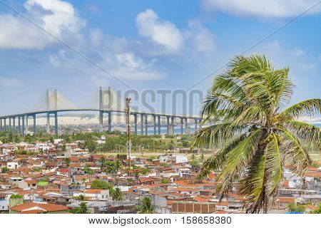 Aerial view cityscape of Natal city, Brazil