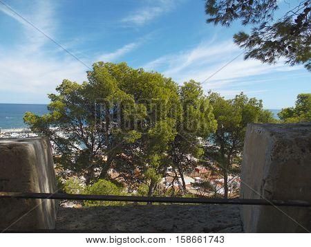 paisaje con árboles mar y cielo azul