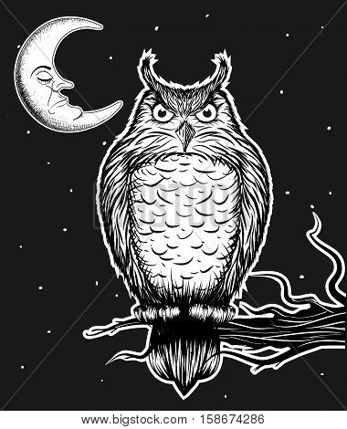 Owl is sitting on the tree in the nighttime.Vector illustration