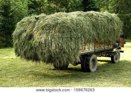 Hay on the back of an old car. Freight car with a pile of dry grass