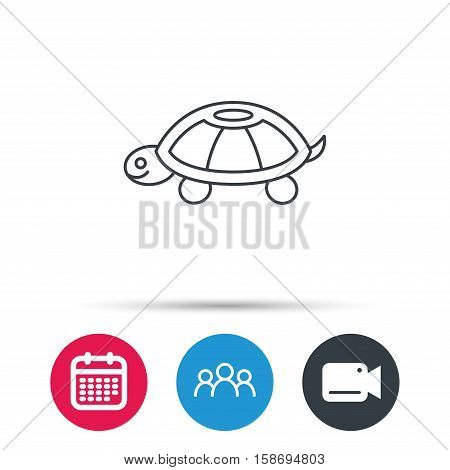 Turtle icon. Tortoise sign. Tortoiseshell symbol. Group of people, video cam and calendar icons. Vector