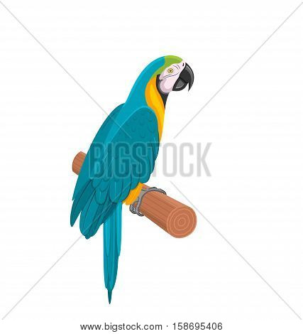Illustration Pretty Blue Parrot Ara on Branch. Bird Isolated on White Background. Endangered Animal - raster